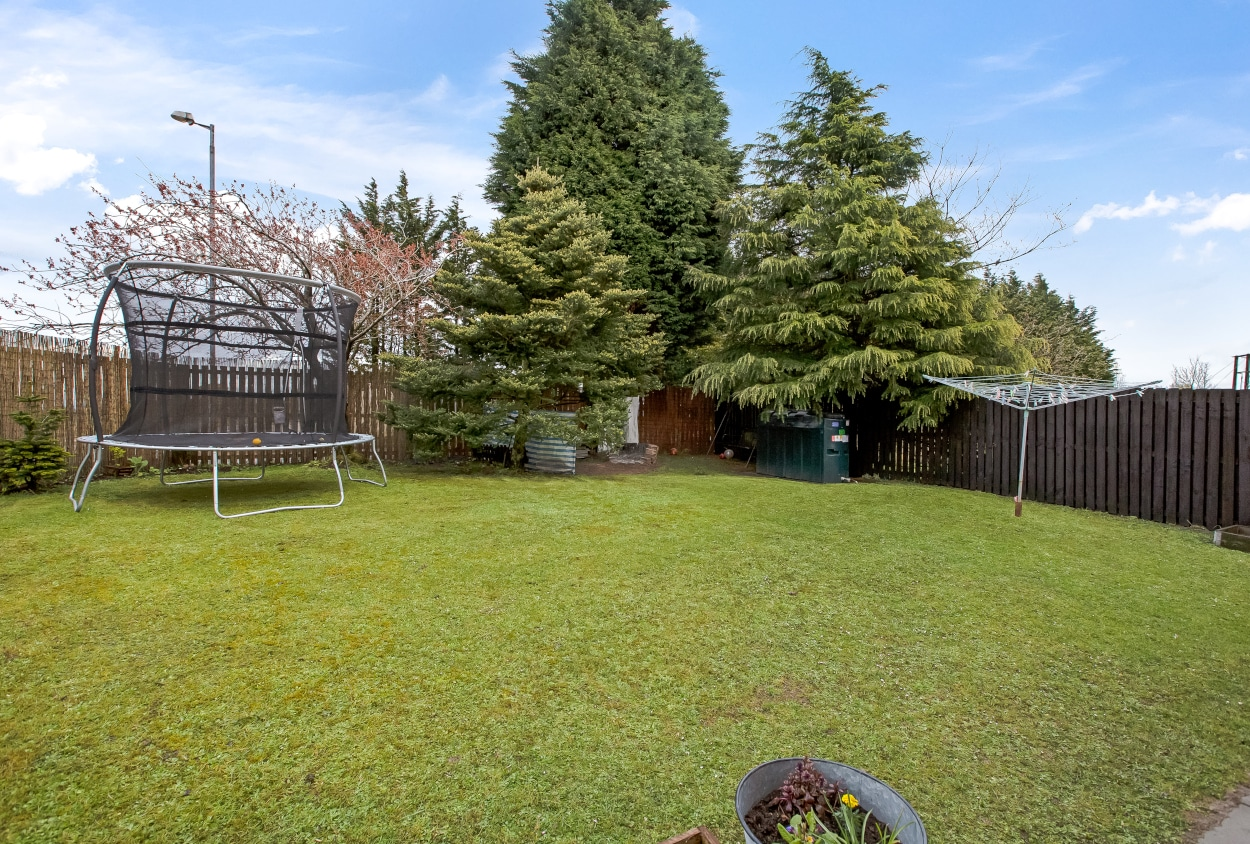 Elmpark Grove Back Garden